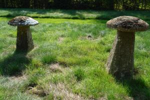een paar vroeg 19de eeuwse staddle stones