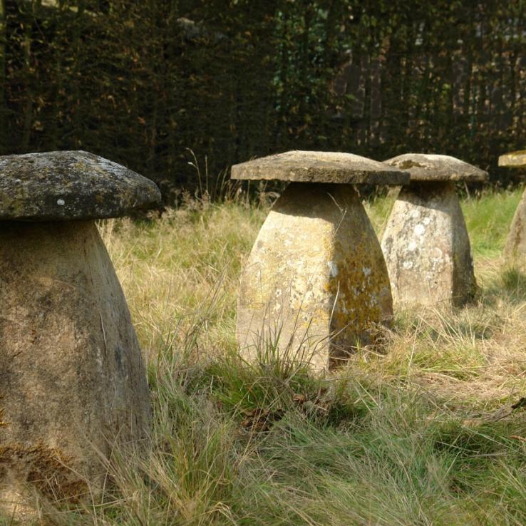 A set of 4 Ham stone staddle stones