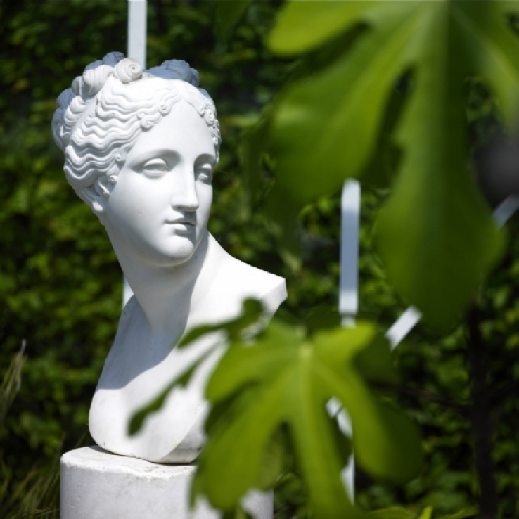 Italian bust of Venus Italica